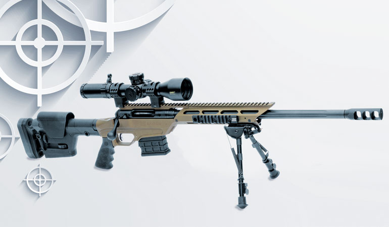 savage model 10 308 review