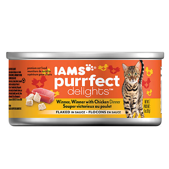iams canned cat food review