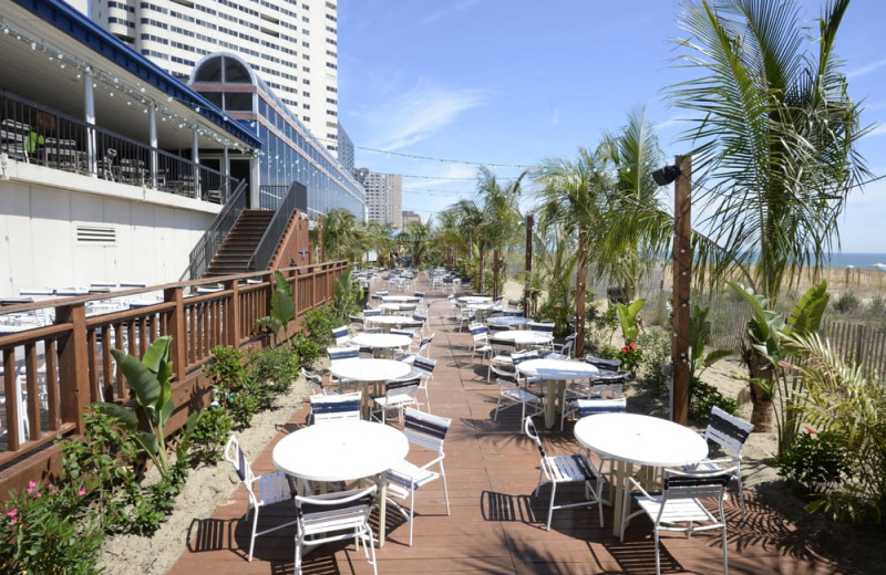 clarion fontainebleau ocean city reviews